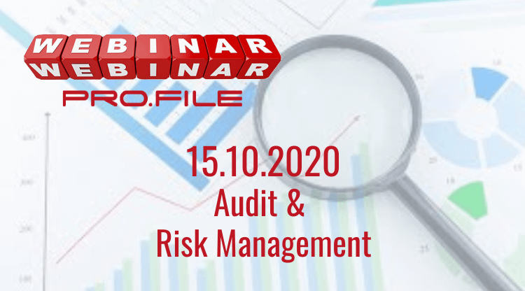 Audit risk management