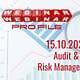 Audit risk management